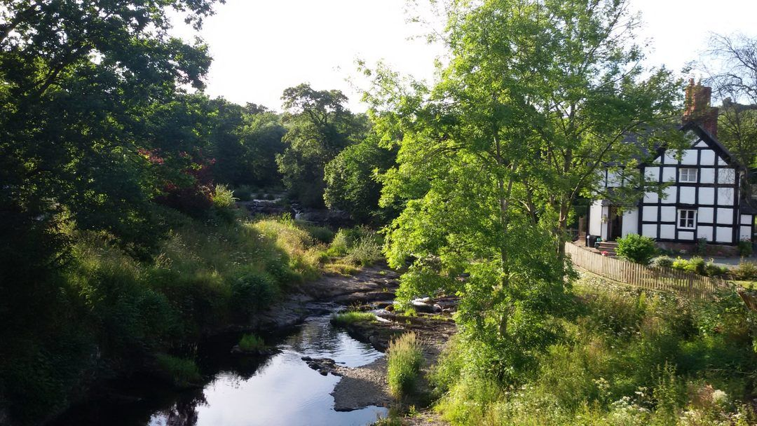 walk in Berriew near Welshpool