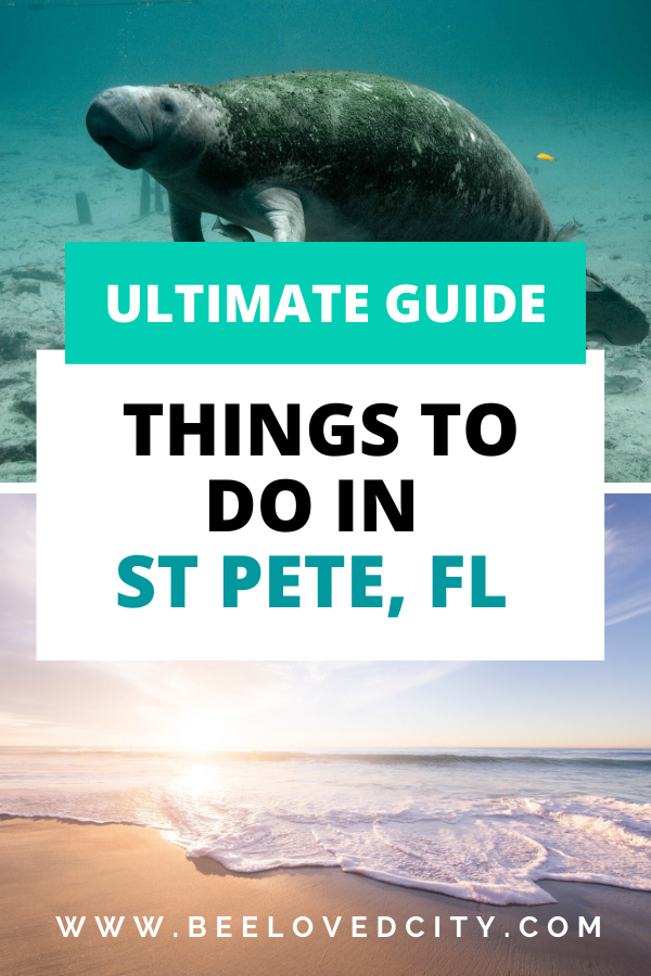 st pete florida things to do