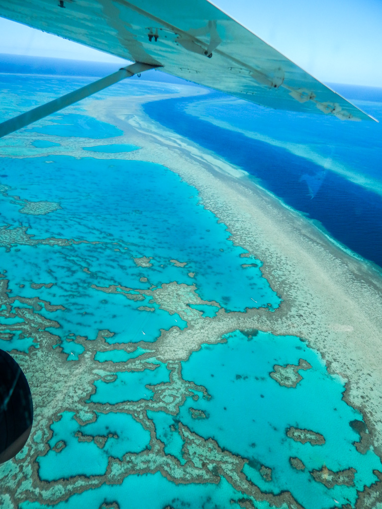 19 Amazing Fun Facts about the Great Barrier Reef ...