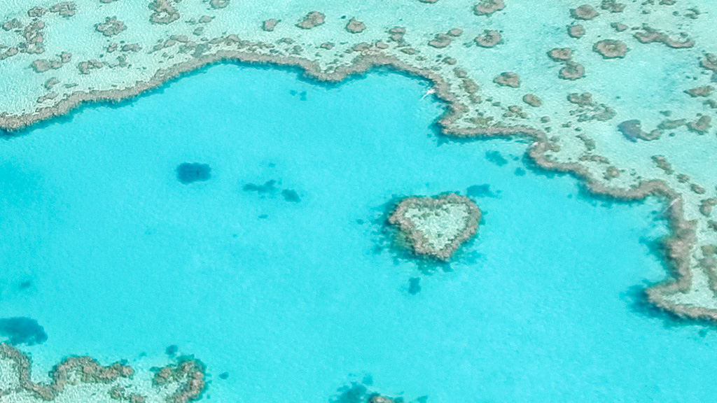 heart reef great barrier reef