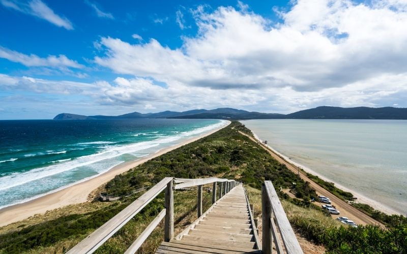 bruny island things to do tasmania