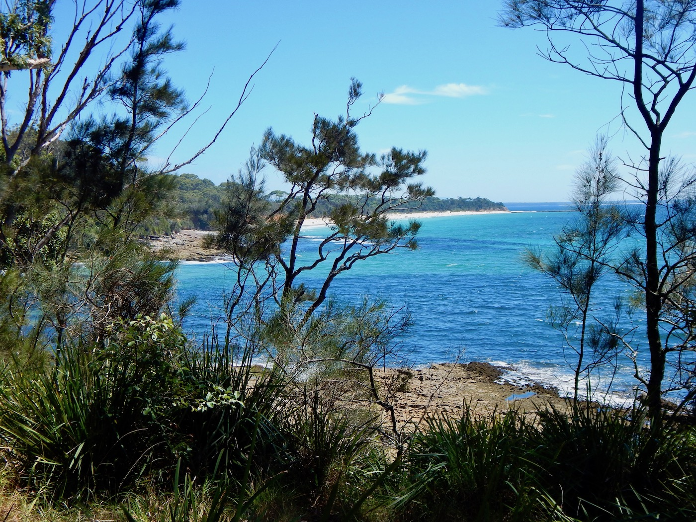 greenfield beach in jervis bay NSW view
