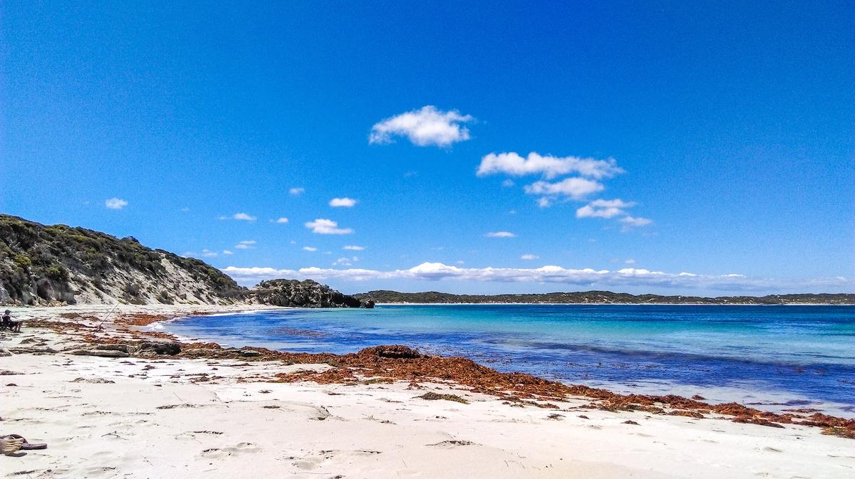 beach kangaroo island vivonne bay