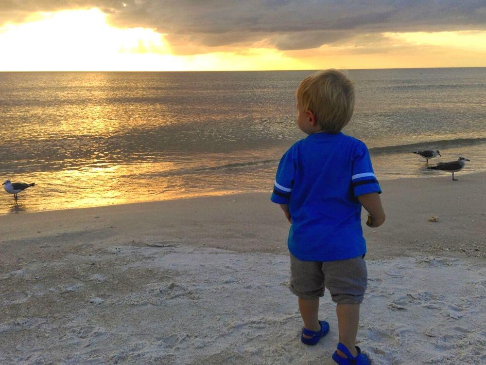 anna maria island beach florida