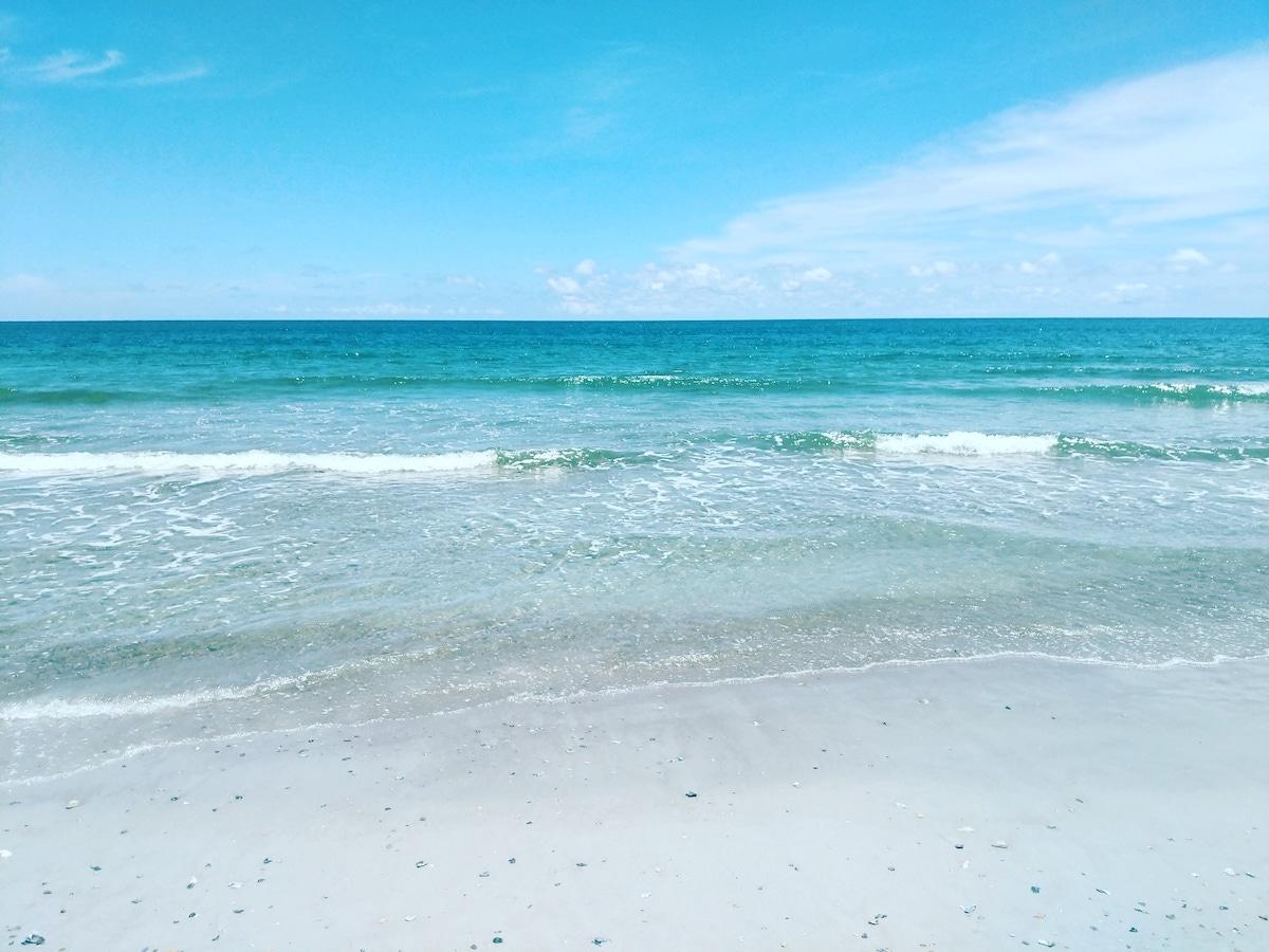 best beach in florida amelia island
