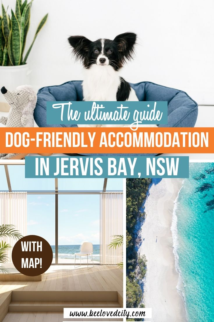 pet friendly accommodation in Jervis Bay