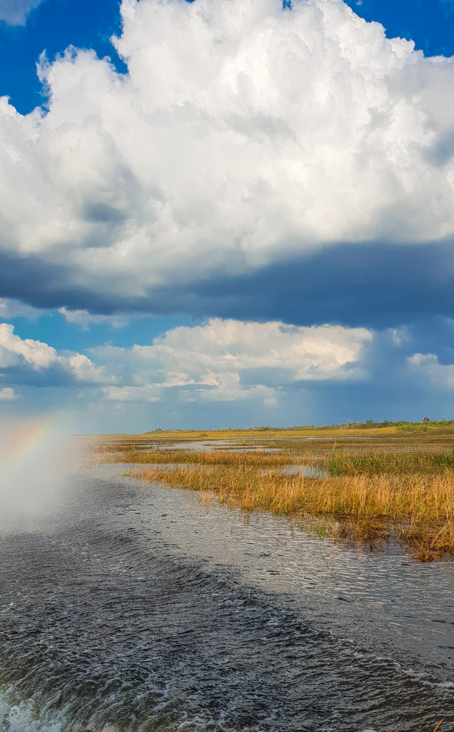 things to do everglades national park