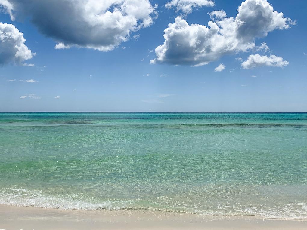 florida grayton beach