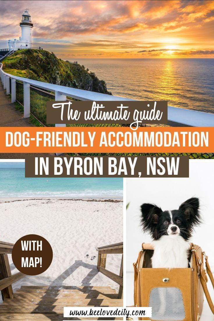 guide pet friendly accommodation byron bay