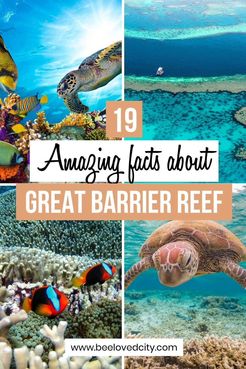 fun facts about Great Barrier Reef
