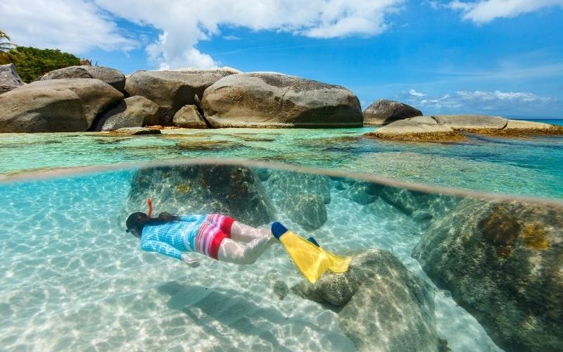 snorkelling in airlie beach