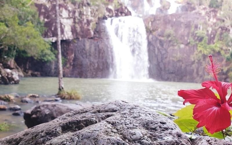 creek ceddar falls in conway national park