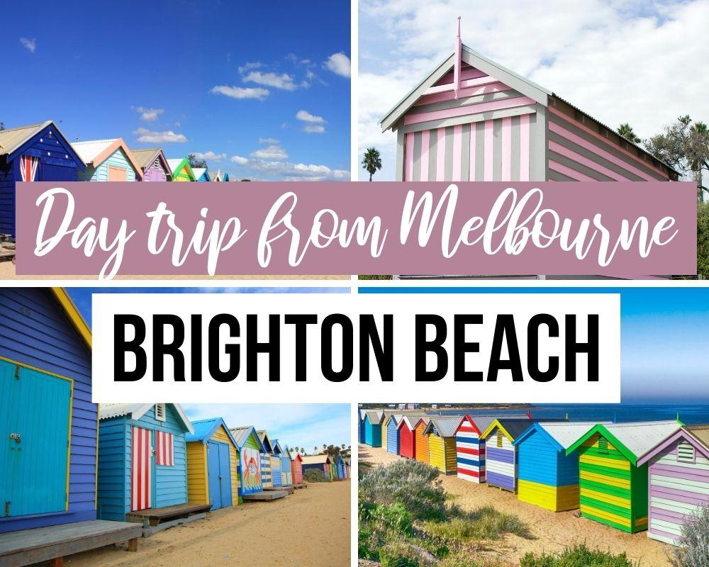 day trip from melbourne brighton beach
