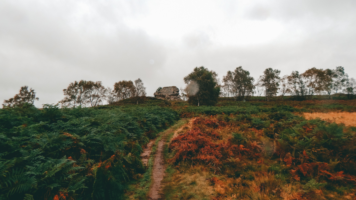 walking in the dalby forest to the bridestones