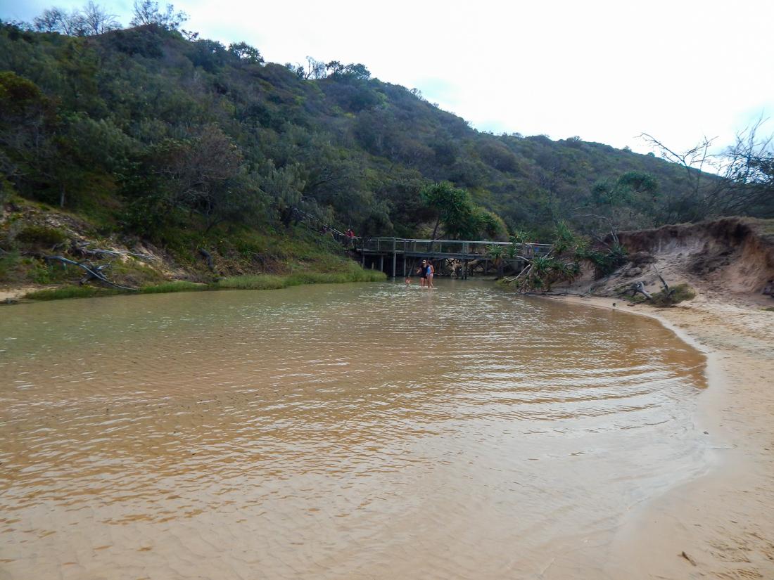 Visiting Eli Creek on Fraser Island