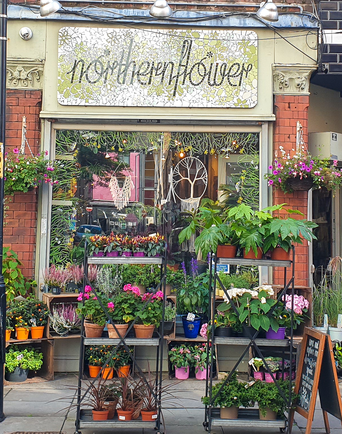 northern flowers in northern quarter Manchester