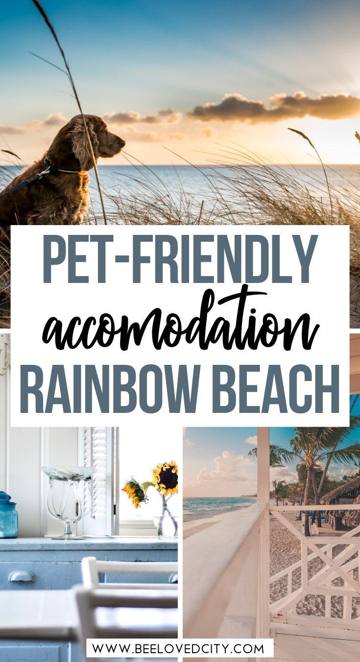 Pet friendly accommodation rainbow beach queensland