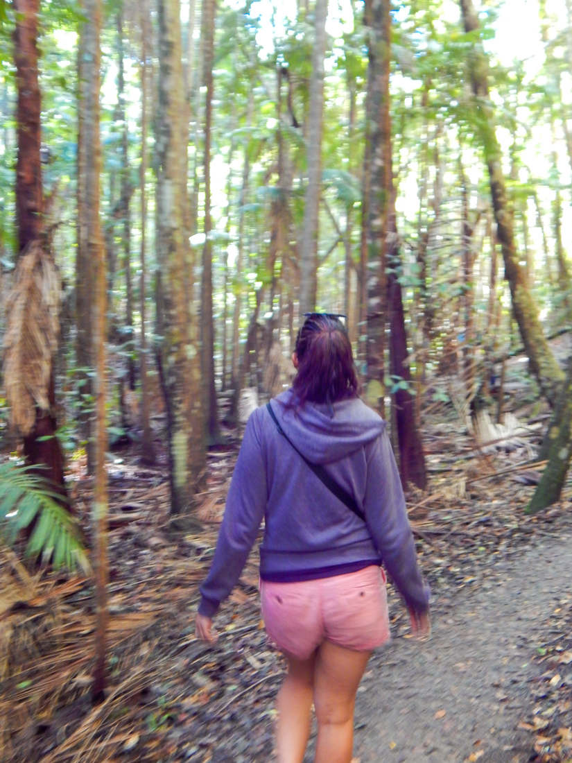 Hiking on Fraser Island