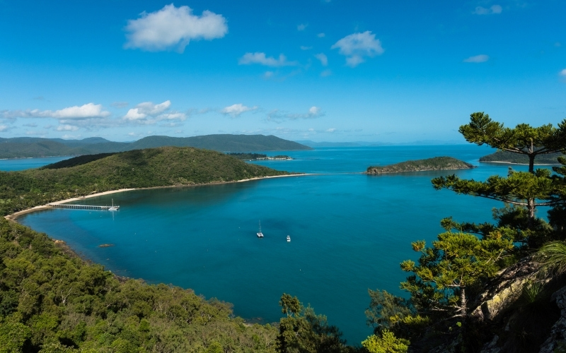 south molle island in the whitsundays