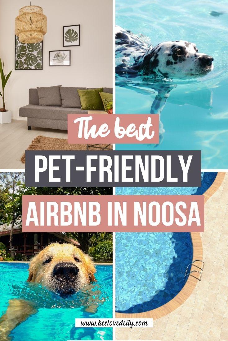 Noosa Airbnb Pet friendly