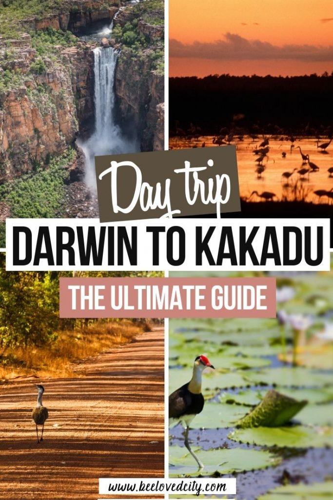 Plan a day trip from Darwin to Kakadu