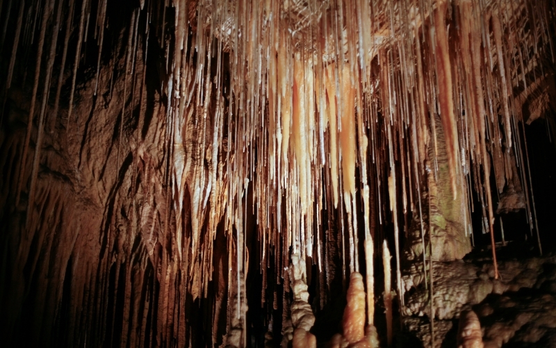 Visiting Hastings Caves in Tasmania