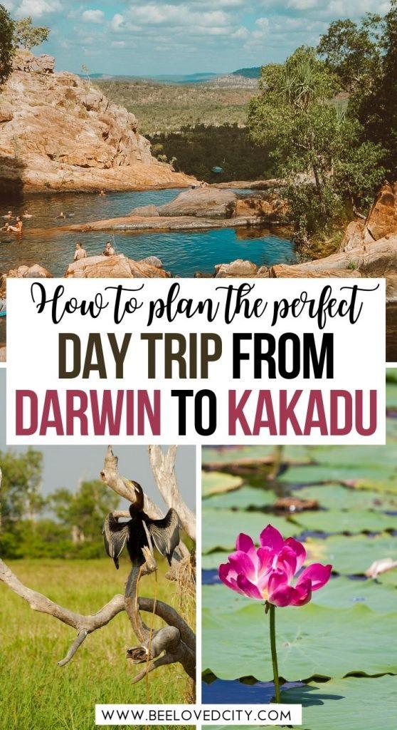 How to plan a Kakadu day trip from Darwin