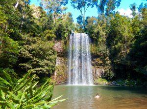 View of Millaa Millaa Falls near Cairns