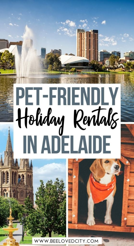 Best pet-friendly holiday rentals in Adelaide Australia