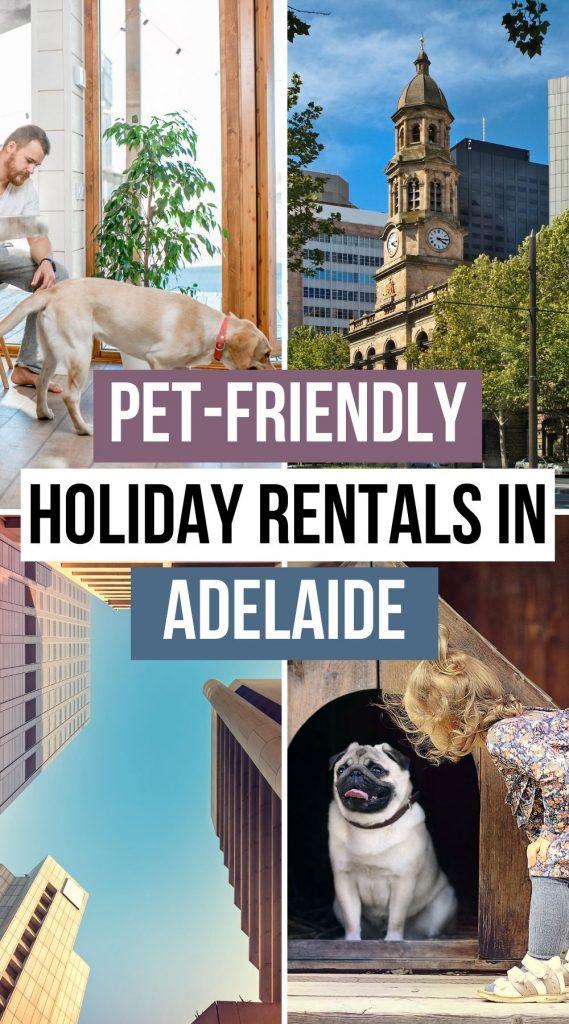 Best Pet Friendly Rentals in Adelaide
