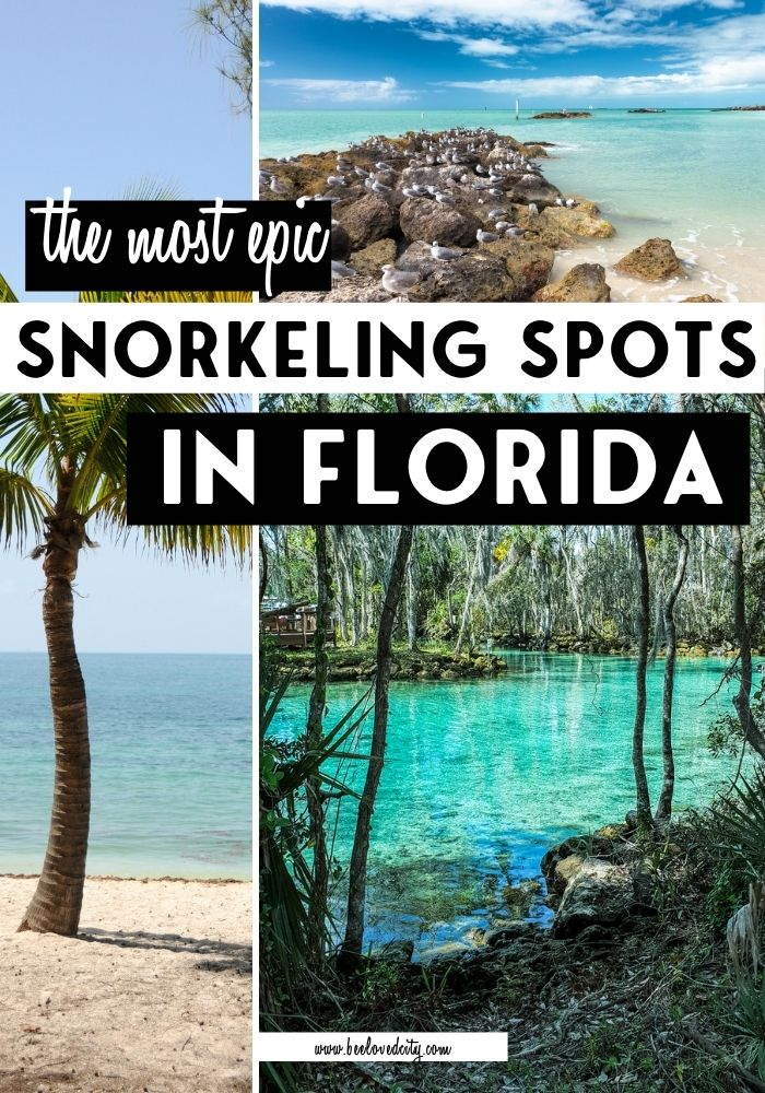 Best places for snorkeling in Florida